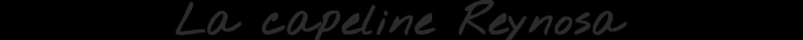 http://lookbook.allee-du-foulard.fr/wp-content/uploads/2018/08/0676-ADF-Accessoires-de-mode-LB-Chapeaux-Titre-capeline_reynosa-1600x80.png