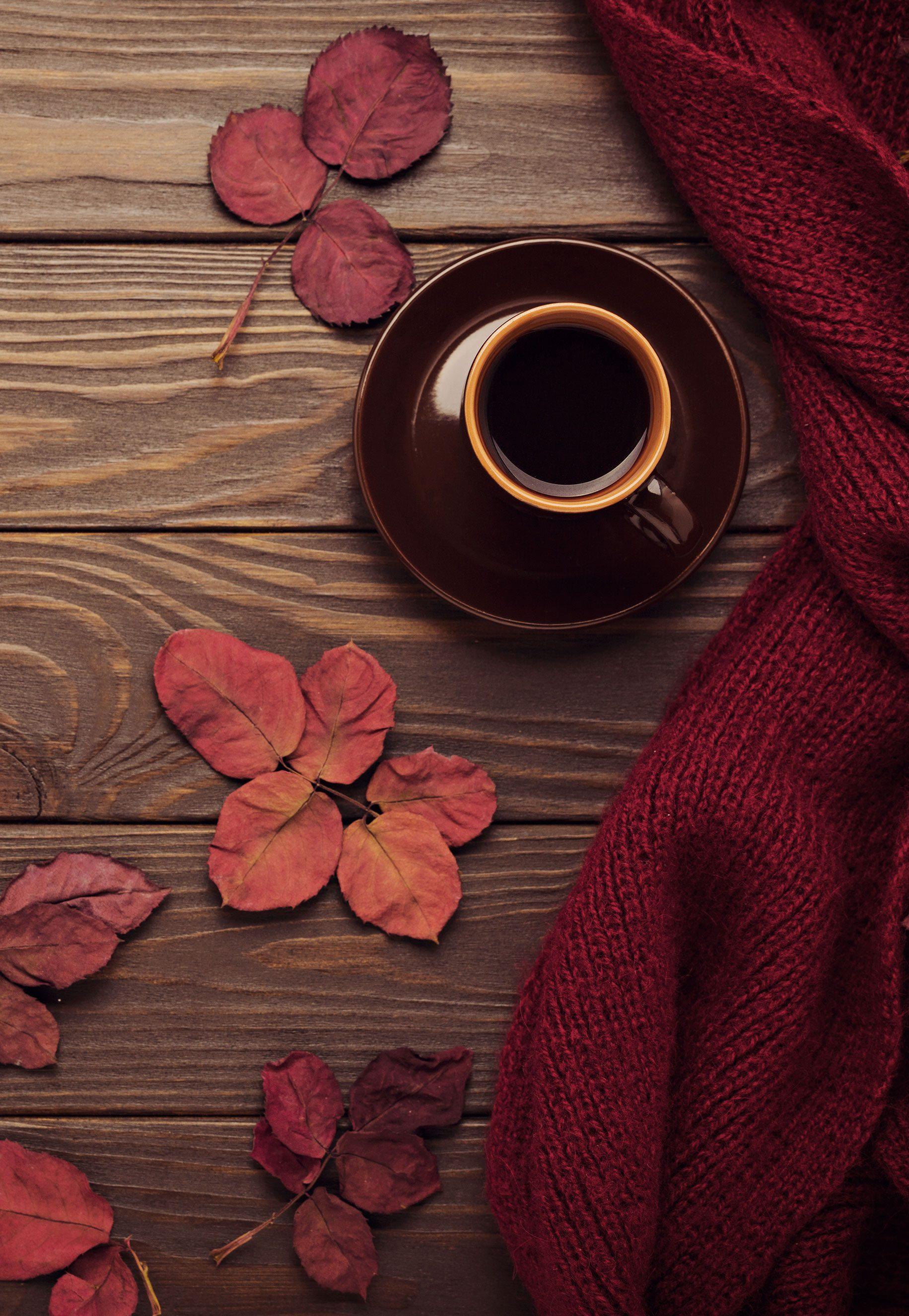 http://lookbook.allee-du-foulard.fr/wp-content/uploads/2018/09/0699-ADF-Accessoires-de-mode-LB-Colorama-automne-Ambiance-3-1831x2650.jpg