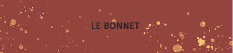 http://lookbook.allee-du-foulard.fr/wp-content/uploads/2019/01/0724-ADF-Accessoires-de-mode-LB-Manteau-Camel-H19-Bouton-2-480x111.jpg